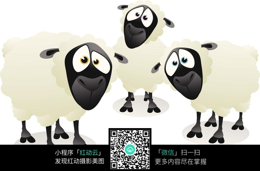 三只小羊图片_动物图片