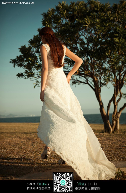 白裙长发美女背影婚纱摄影图片