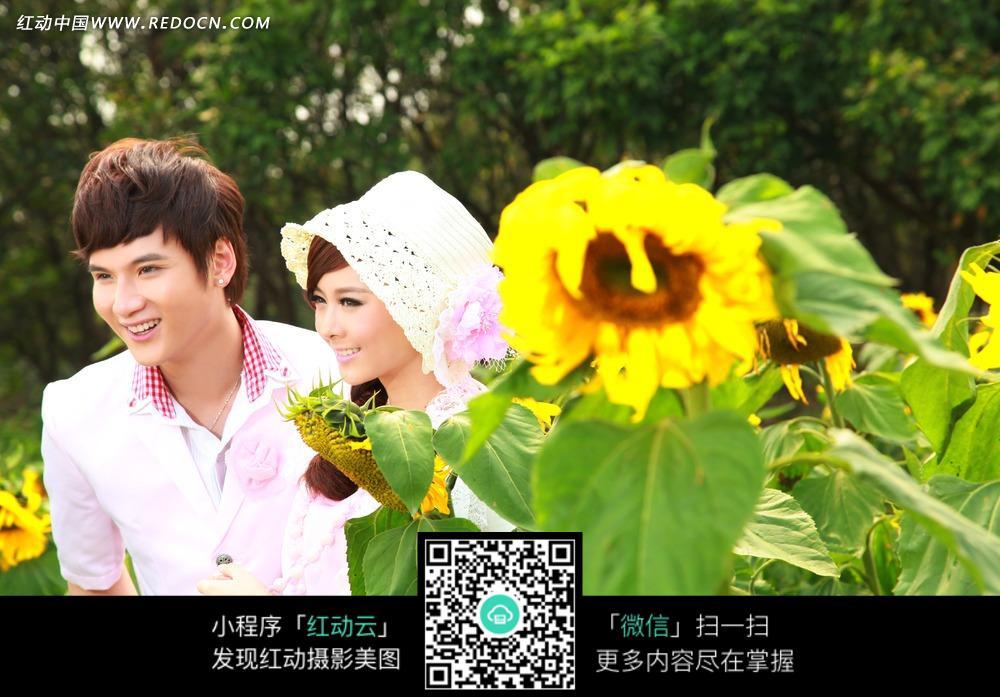 情侣和向日葵婚纱摄影