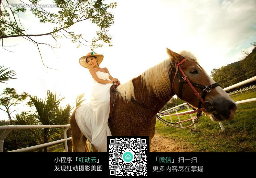 骑马的美女婚纱摄影