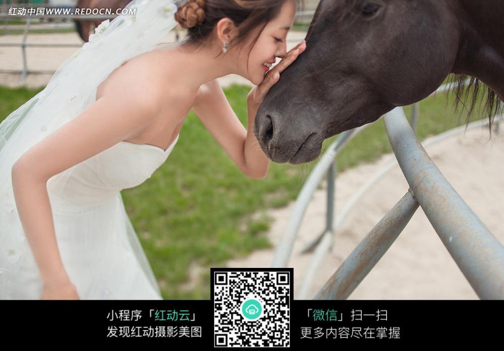 摸着马的美女婚纱摄影图片
