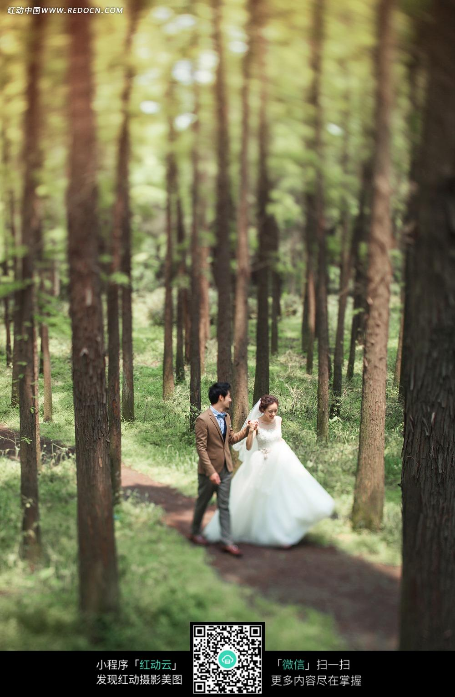 树林和情侣婚纱摄影