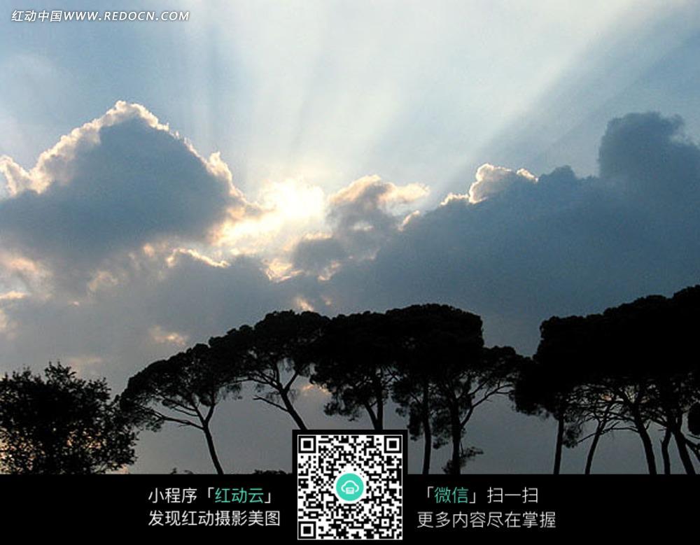 阳光云朵和树木_天空云彩图片