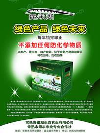 绿色系生态农业宣传单设计