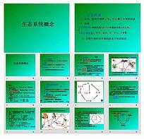 生态系统概念ppt模板