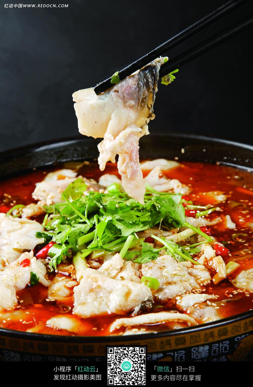 免费艺术logo设计_酸菜鱼美食图片免费下载_红动网