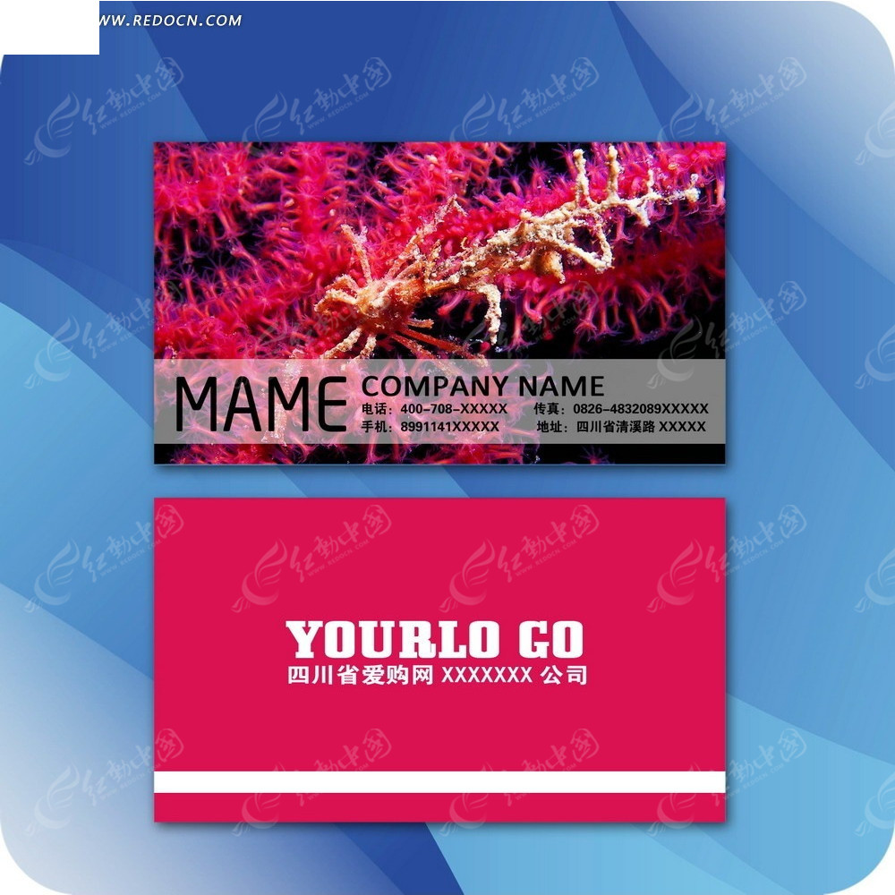免费素材 psd素材 psd广告设计模板 名片卡片 个性海洋微生物背景名片
