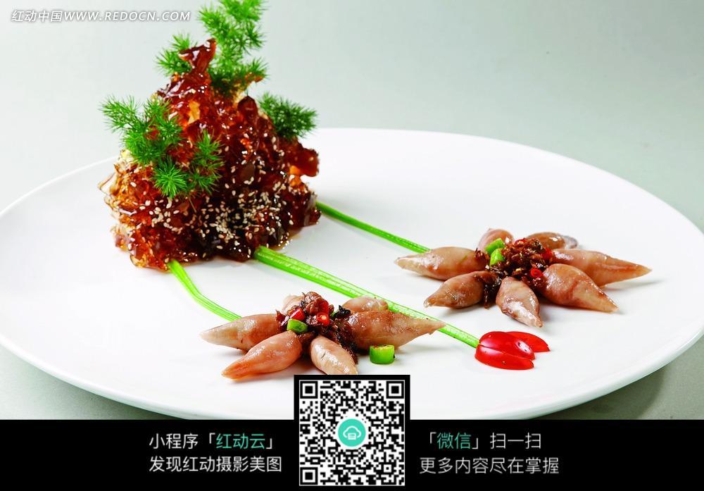 食物菜鲜鱿鱼美食-外婆图库|图片库素材下载(编版材食梦美图片无限图片