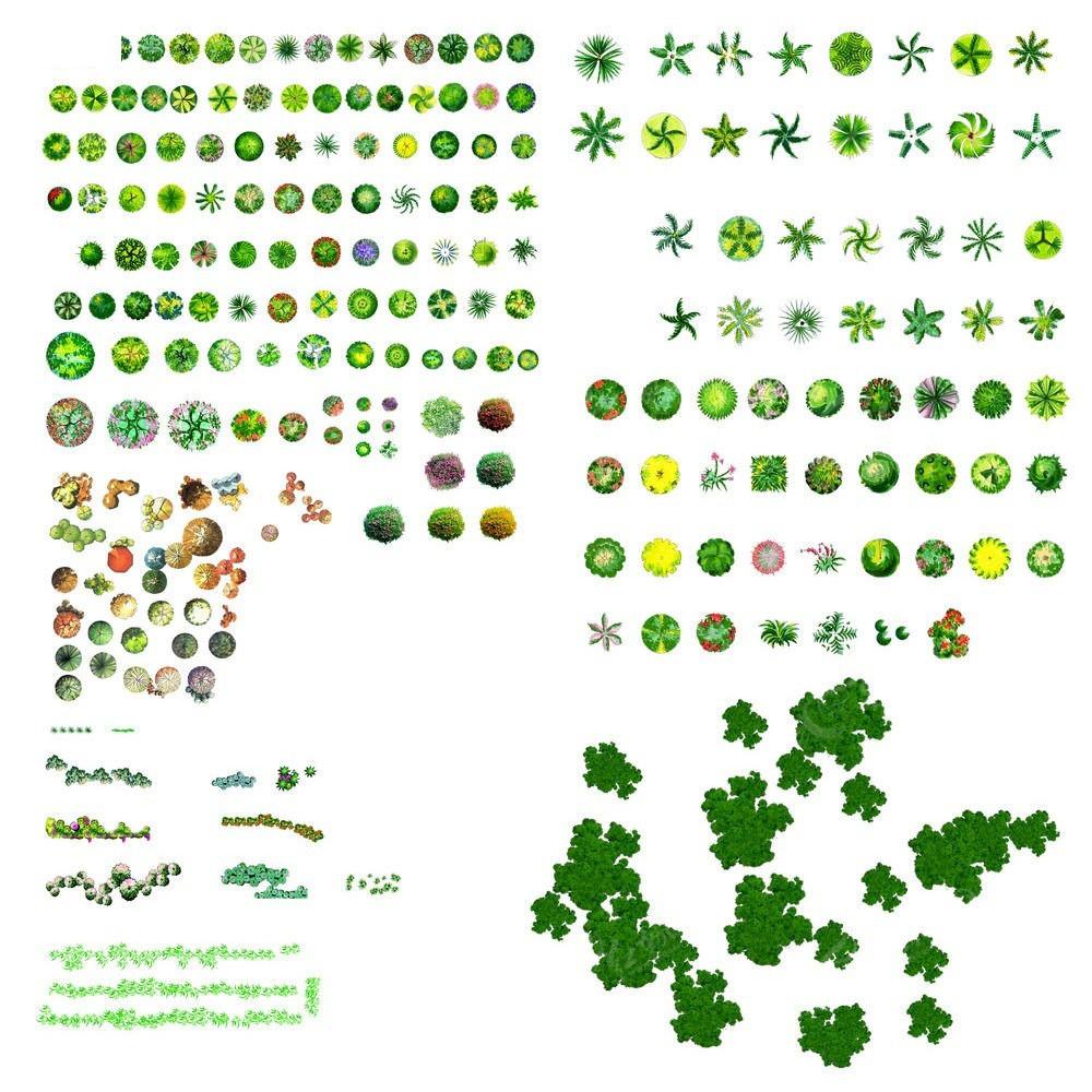 树ps平面树素材