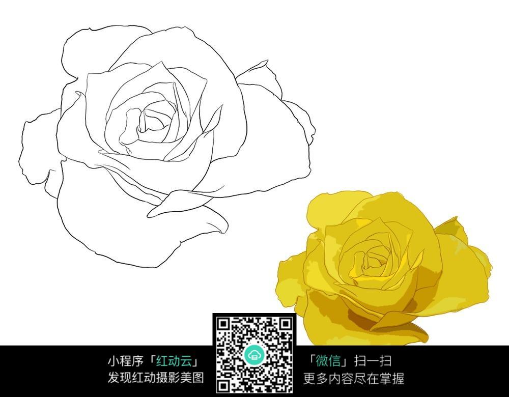 钢笔画图片简单花卉-花朵花卉手绘线稿图片免费下载 编号3704252 红