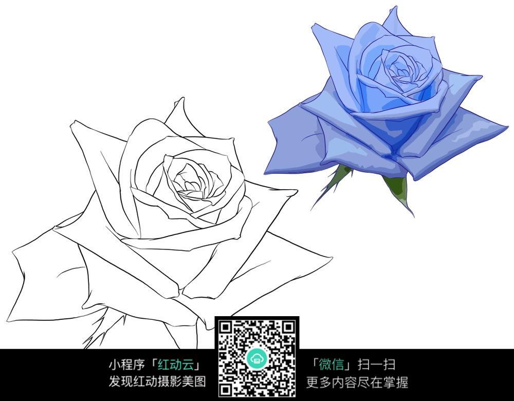 简笔画 花边手绘图片,手绘玫瑰花边图片图片