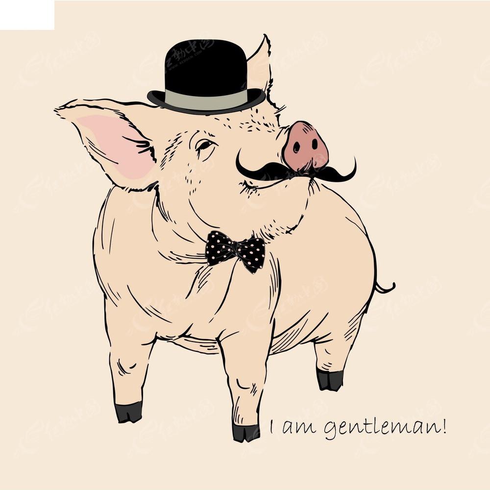 绅士猪手绘线描图形eps免费下载_卡通形象素材