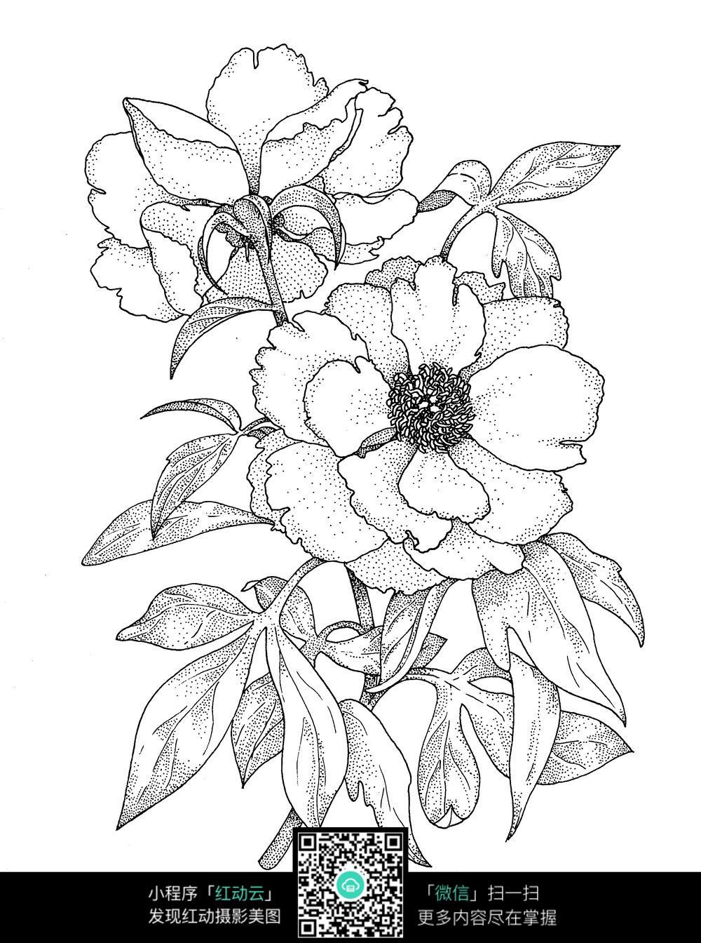 树叶和花朵刺绣图案素材