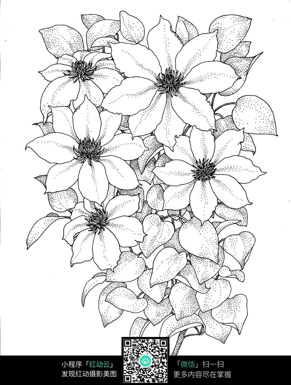 花朵叶子刺绣图案素材