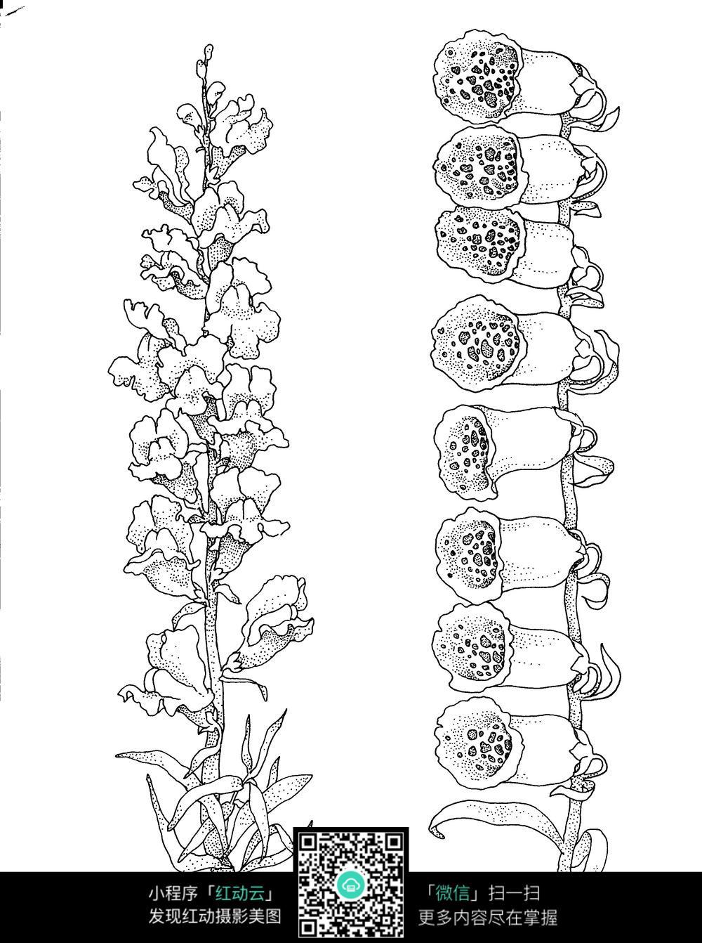 花卉花朵刺绣图案素材