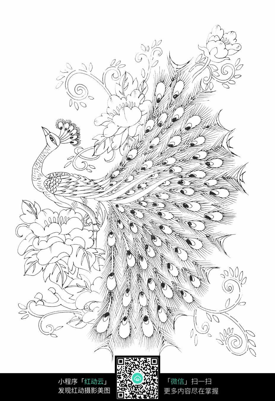 孔雀和花朵刺绣图案素材
