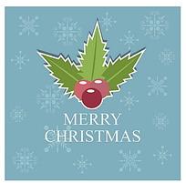 圣诞果圣诞叶雪花背景圣诞卡片