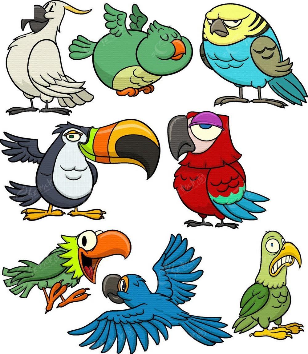 鹦鹉手绘线描画