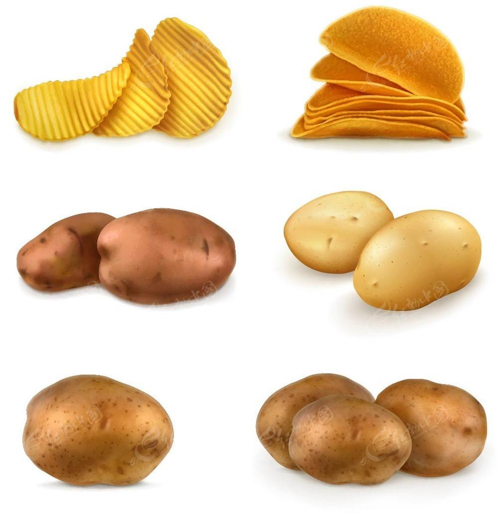 土豆薯片手绘图形