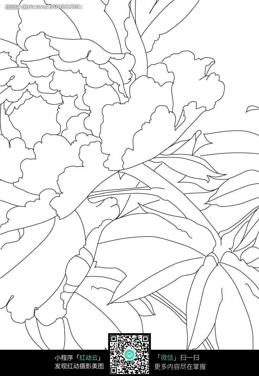 花朵和叶子卡通手绘线稿