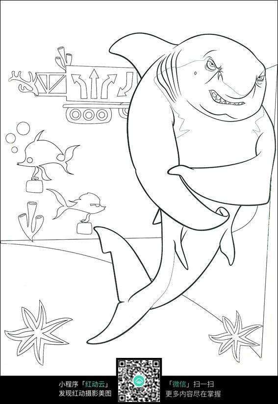 卡通鲨鱼动物线描