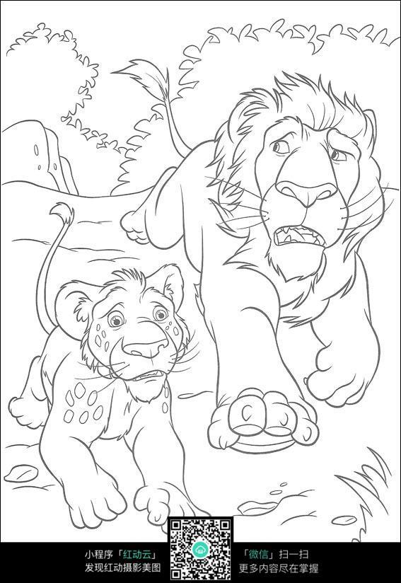 森林小动物老虎和狮子