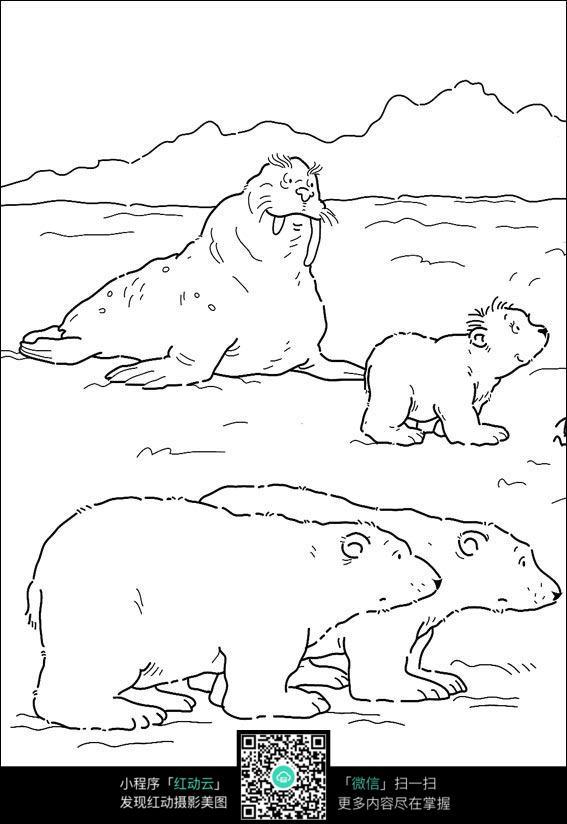 卡通北极熊海狮手绘线稿图片