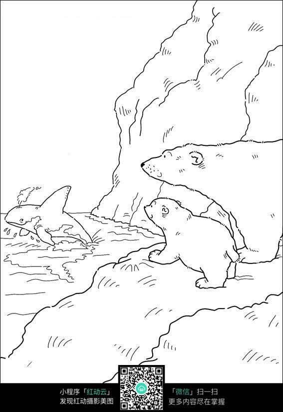 卡通北极熊鲸鱼手绘线稿图片