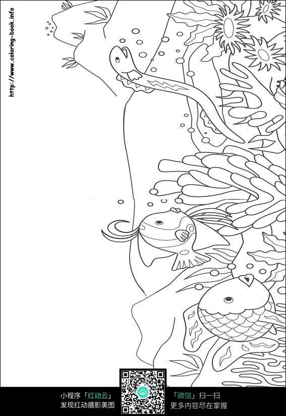 卡通海底鱼水草蛇手绘线稿图片