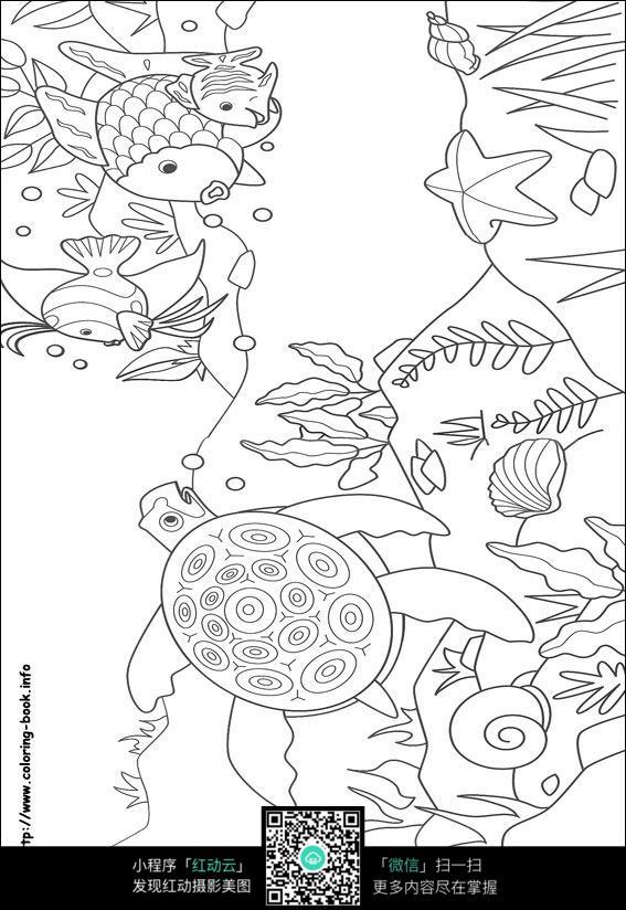 卡通乌龟鱼水草手绘线稿图片