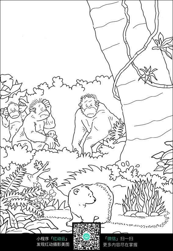 卡通猩猩北极熊手绘线稿图片