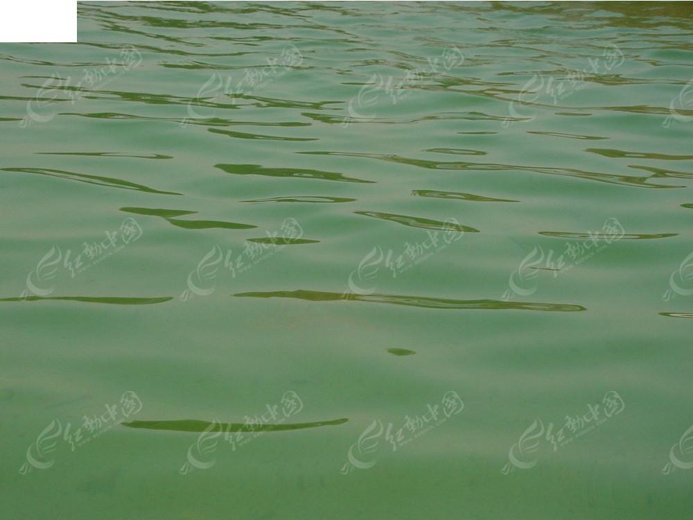 青青的河水哟基督教歌谱