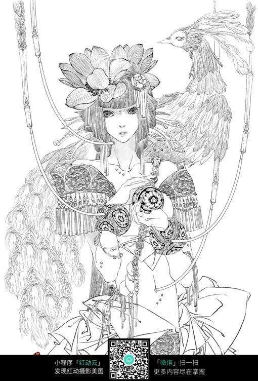 美女和凤凰卡通手绘线稿