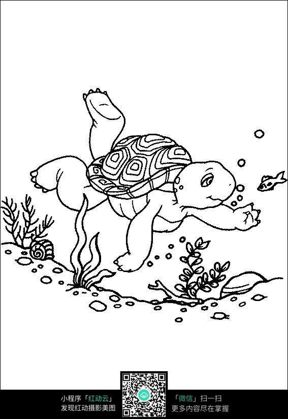 水中游泳的乌龟卡通手绘填色线稿jpg