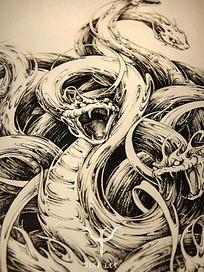 《八岐》缠绕的蛇钢笔线描细节画