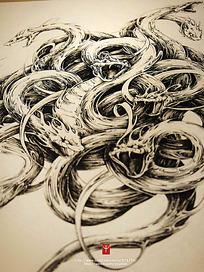 《八岐》缠绕的蛇细节钢笔线描画
