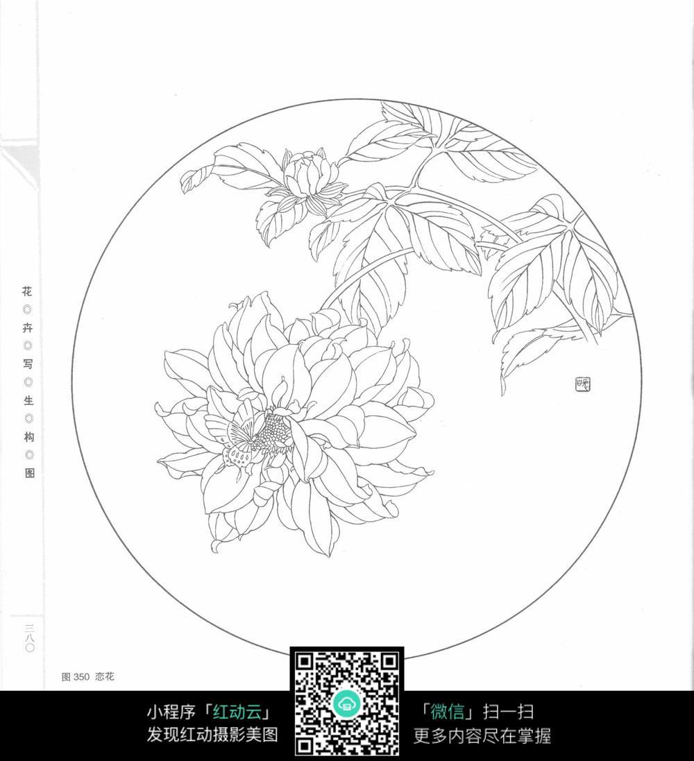 免费素材 图片素材 漫画插画 花草树木 蝶恋花工笔画