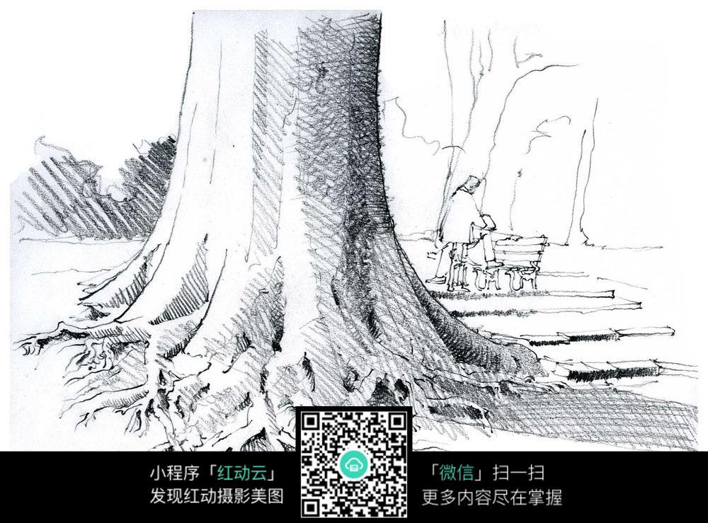 手绘树根钢笔线描画