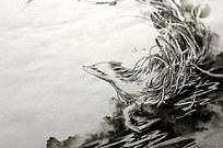 《衍命》水墨背景手绘线描图