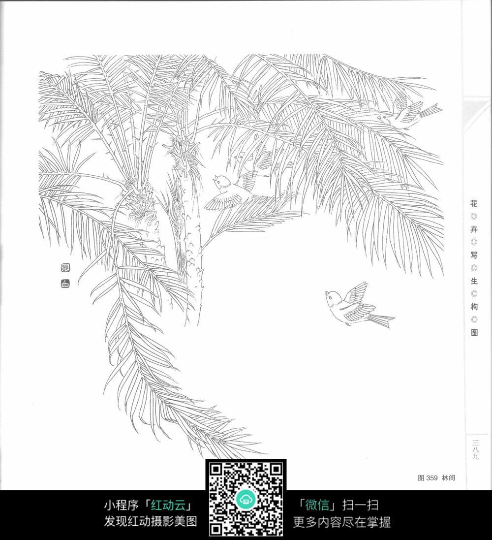 燕子春回工笔画图片免费下载 编号3707406 红动网