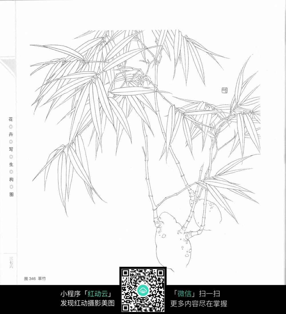 手绘竹子文学社招新海报