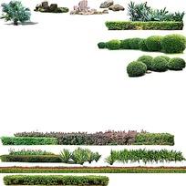 公园草坪花卉psd素材