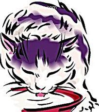 喝水的猫矢量插图