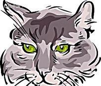 绿眼猫矢量插图