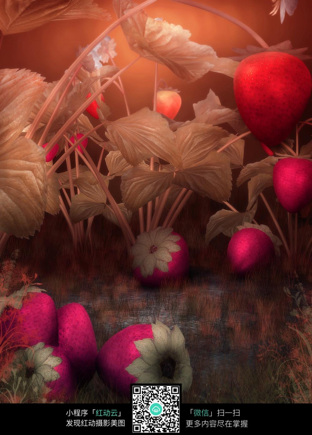 梦幻草莓背景图片