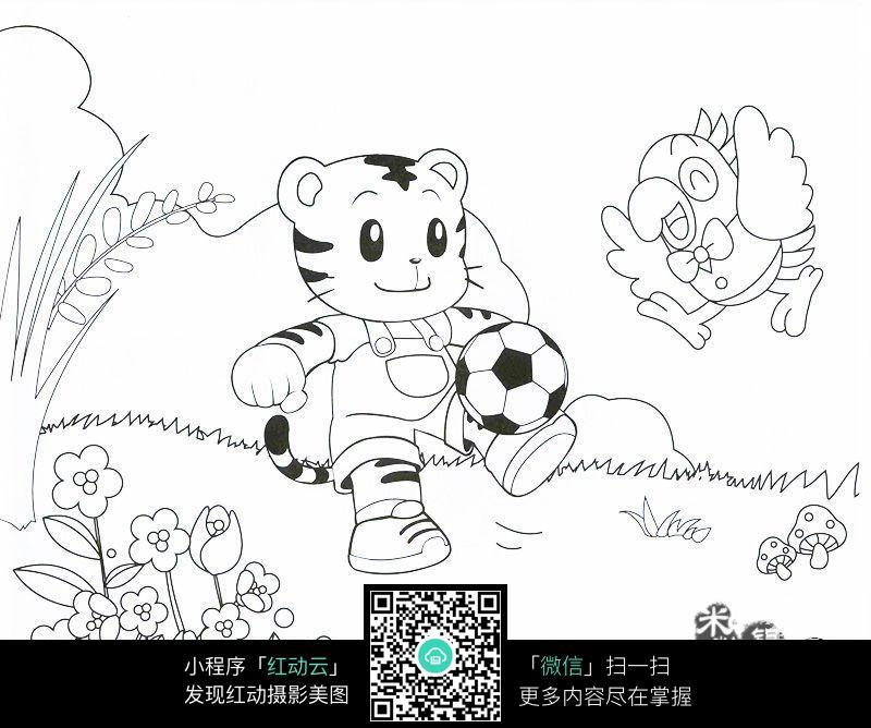 小老虎和鹦鹉玩足球卡通填色线稿jpg图片
