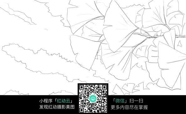 银杏叶简笔画-银杏叶手绘线稿JPG图片免费下载 编号3698532 红动网