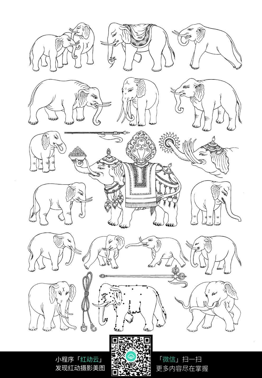大象手绘线描图形