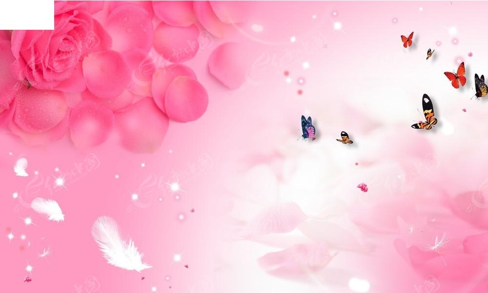 手绘粉色玫瑰婚照背景素材_底纹背景_红动手机版