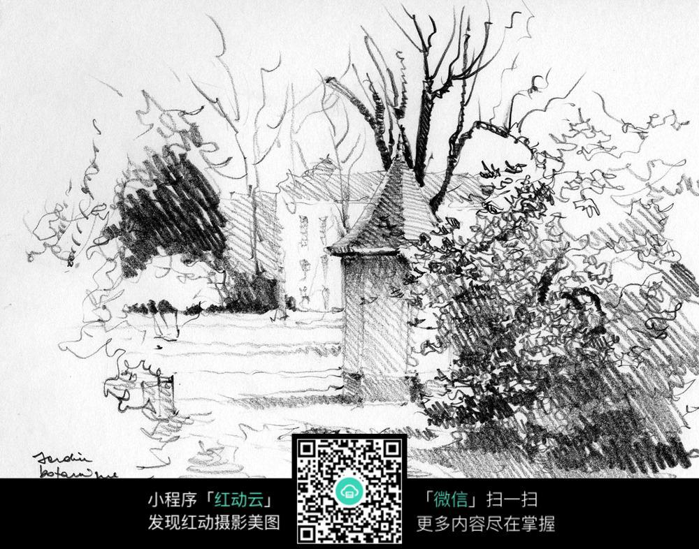 国外林间小路手绘插画